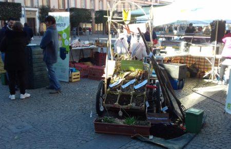 Tous au compost au marché de la cathédrale !