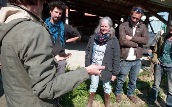 Formation-initiation au compost de toilette sèche