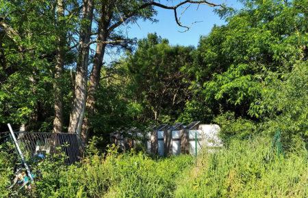 Gestion de toilettes sur habitats précaires à Toulouse