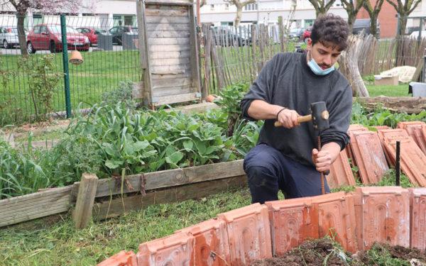 Construction d'un jardin des simples
